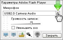 Выберите микрофон в параметрах флеш плеера